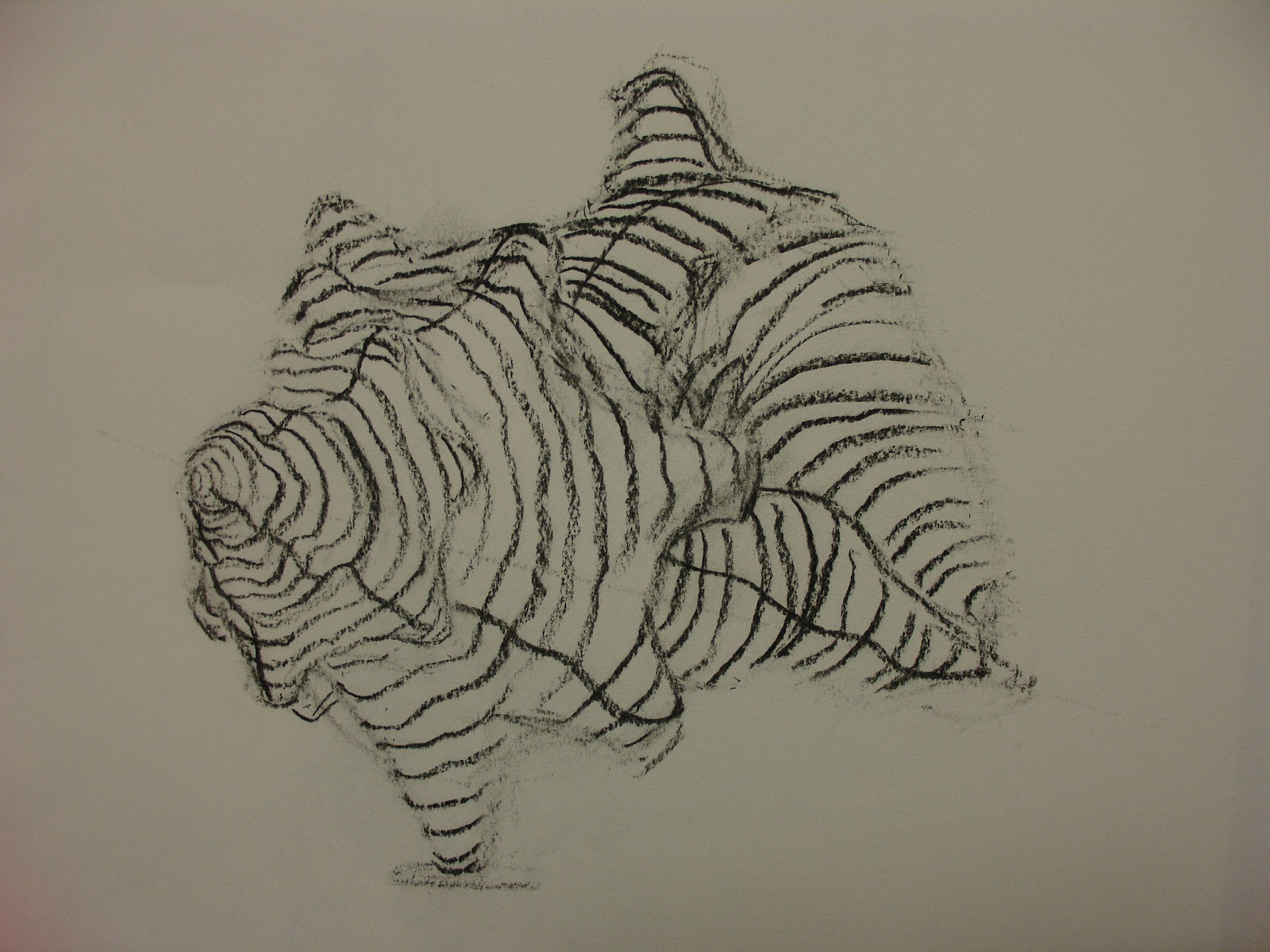 Uncategorized Shell Drawings shell drawings lessons tes teach rob 5 apart from the drawings
