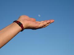 """""""Un amic és ... una mà que sempre sosté la teva, siguis on siguis, sense que importi la proximitat"""