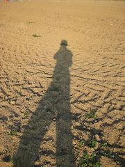 """""""La adulación es como la sombra, no os hace más grandes ni más pequeños"""""""