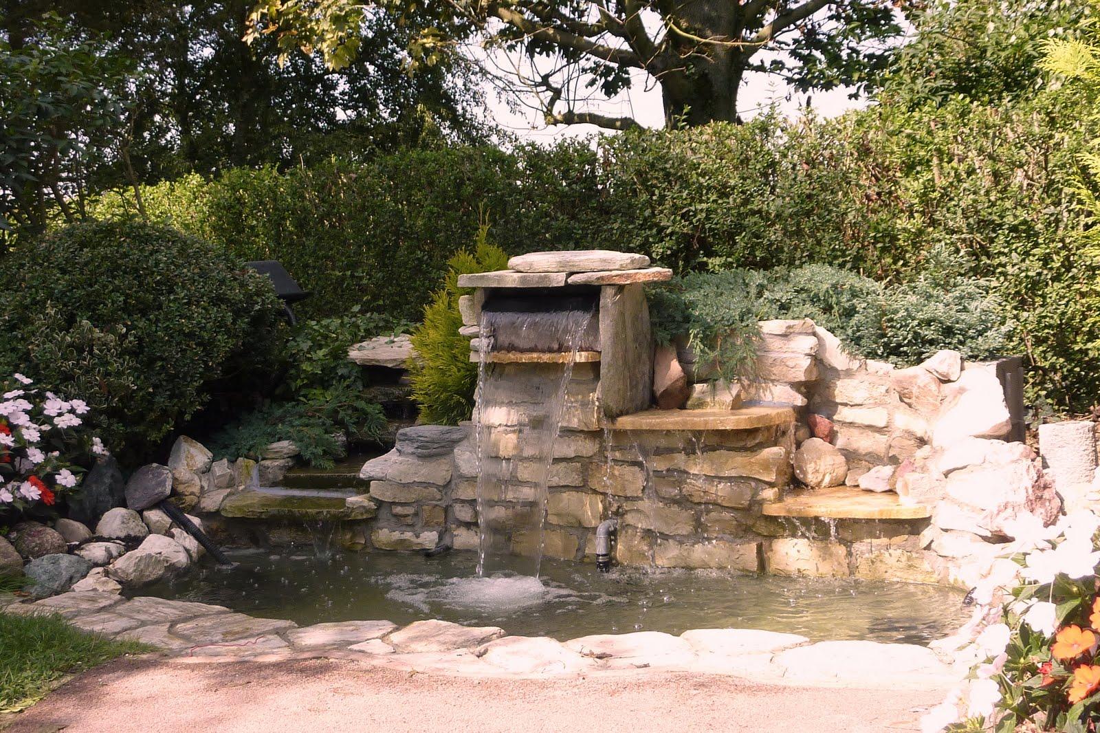 jardin de la sauvagine une belle cascade toute une petite faune s 39 y invite. Black Bedroom Furniture Sets. Home Design Ideas