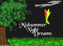 Já sonhaste este Verão?...