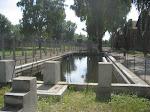 Auschwitzin uima-allas: