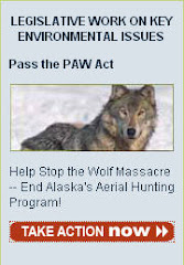 STOP ALASKA'S AERIAL HUNTING
