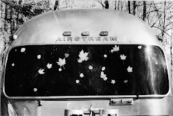 The Woodland Airstream Retreat