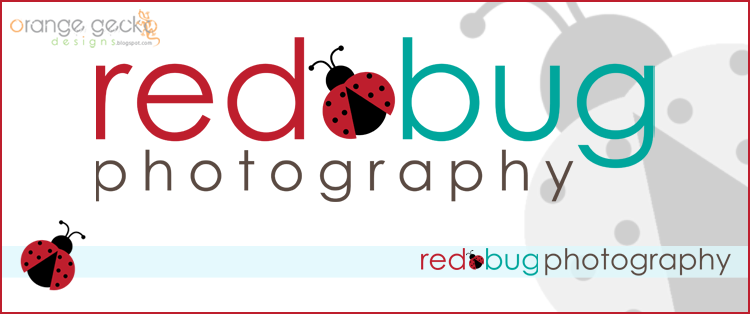 logo design for red bug photography