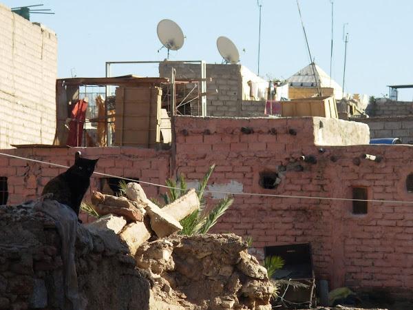 Marrakech (fotos de Patri y Alex)