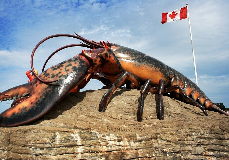Dear Blue Lobster Largest Cray Ever Found