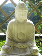 Meditação Jardim