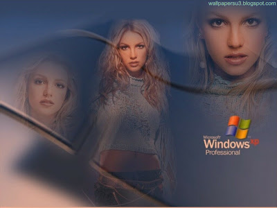 Windows XP Normal Resolution Wallpaper 4