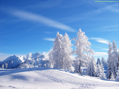 Winter Season Standard Resolution Wallpaper 12