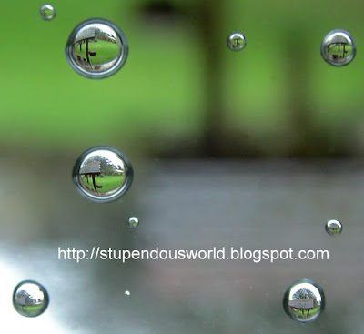World In A WaterDrop