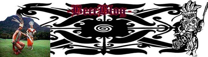BeccBlog