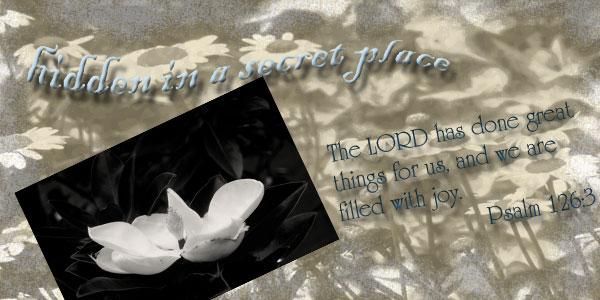 Hidden in a Secret Place