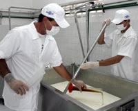PEQ.FABRICAS DE LACTEOS: quesos,mantequilla,requesón,yogurt,cremas,caramelos,dulce leche,otras