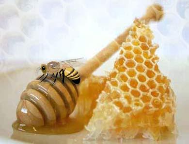 http://1.bp.blogspot.com/_AM01ZoY3w54/Sp613r6GWTI/AAAAAAAAAAw/NzPrb8cE7J8/s400/miel.jpg