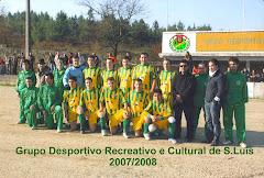 G.D.R.C.S.LUIZ - 2008