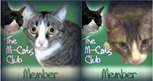 M-Cat Members R We!