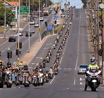 of the bandidos bikie gang