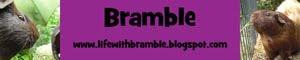 Life With Bramble