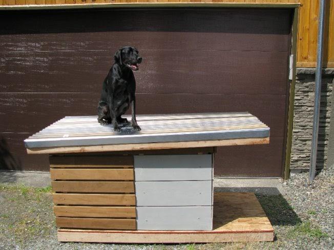 Dog 20 Dog House Design