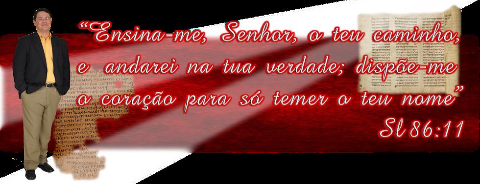 Robson T. Fernandes