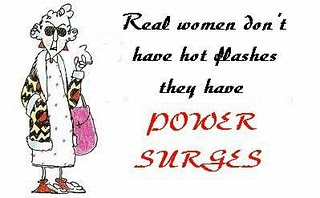 Hot Flash Jokes http://margymuses.blogspot.com/2010/07/bits-of-humor_26.html