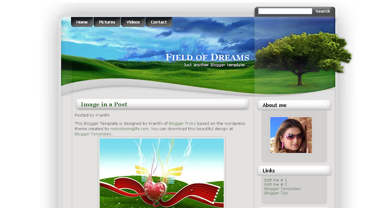 http://1.bp.blogspot.com/_AOJK6bFFsUI/SQgMh5LDPRI/AAAAAAAAoVg/sFz-YTBcpKc/s800/Field+of+Dreams.png