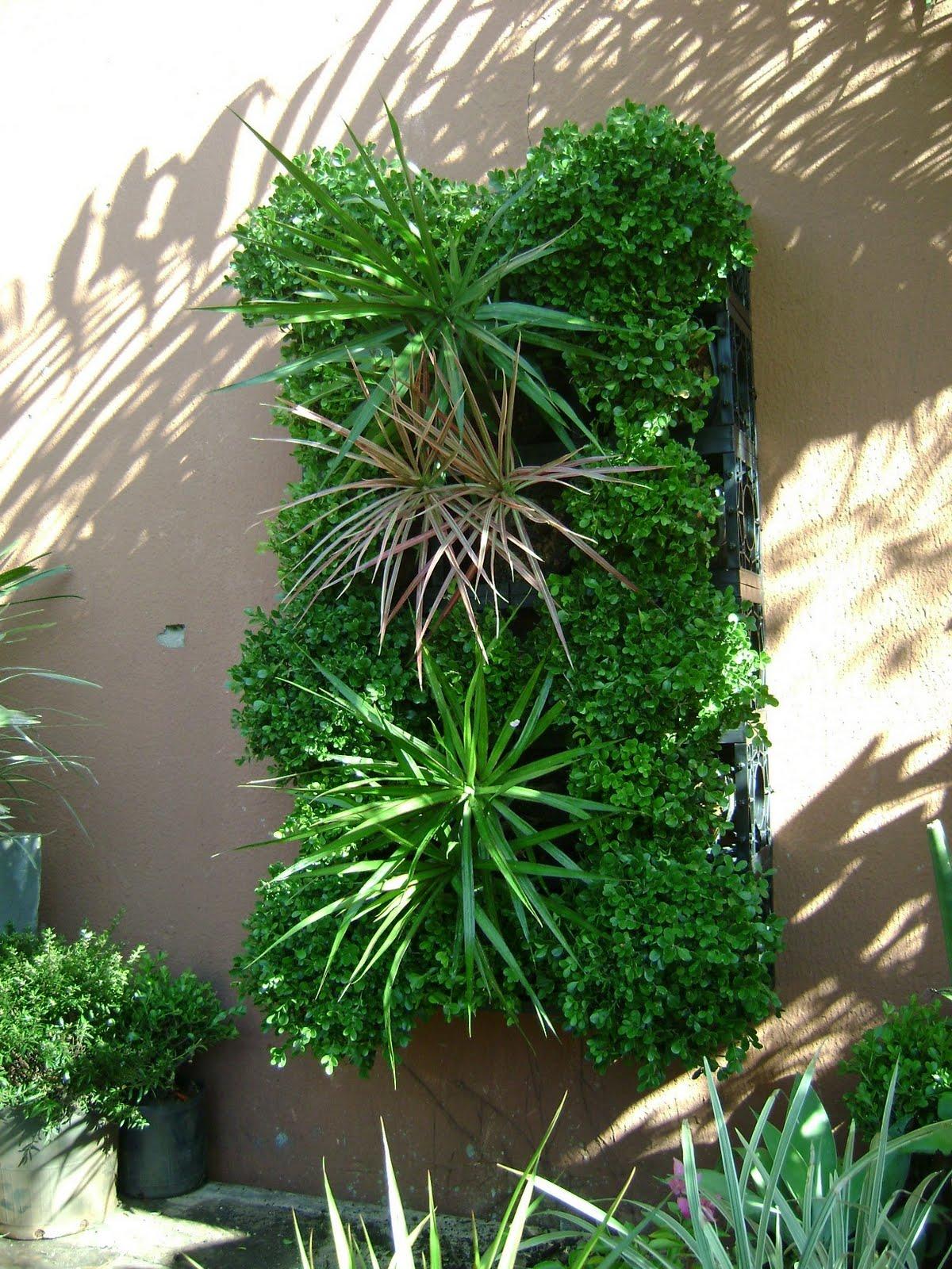 Blog da Paisagista Mais um modo de você montar um Jardim Vertical