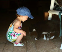 Toddler with Barn Cat