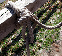 Tying a Lead Rope Slip Knot: Step 7