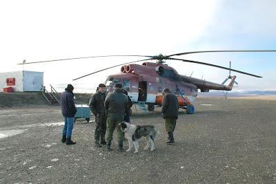 на-вертолет