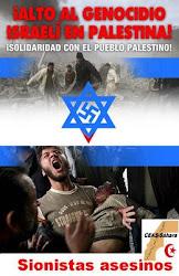 Las asociaciones solidarias con el Pueblo Saharaui nos solidarizamos con el Pueblo Palestino