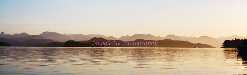 NuggleMe Photography