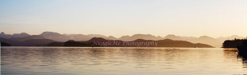 NuggleMe Photography