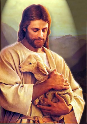 Christian sheep