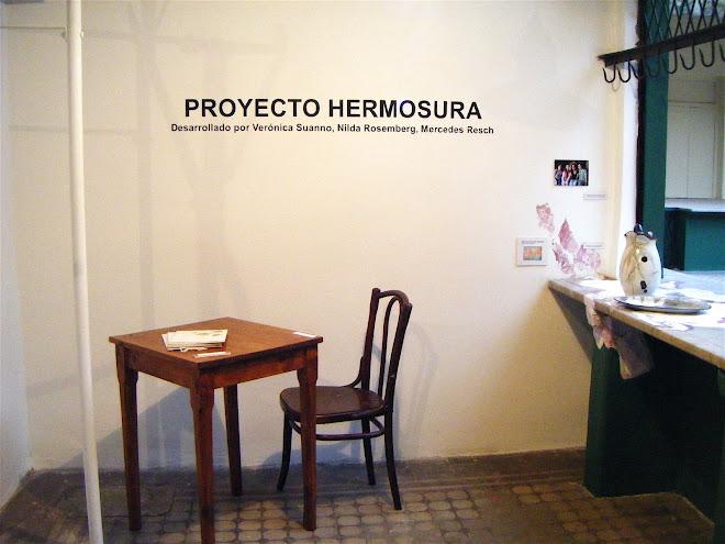 Museo del Mercado, Coronel Suárez, 06/08/08