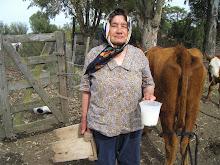 Leche  tibia de vaca