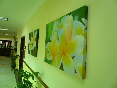 canvas photo print, plumeria flower