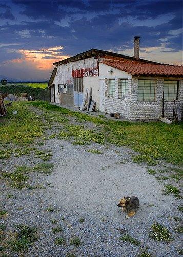 Mirsina köyü-2