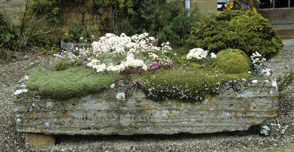 Dirty Horticulture Hypertufa There Is No Cure