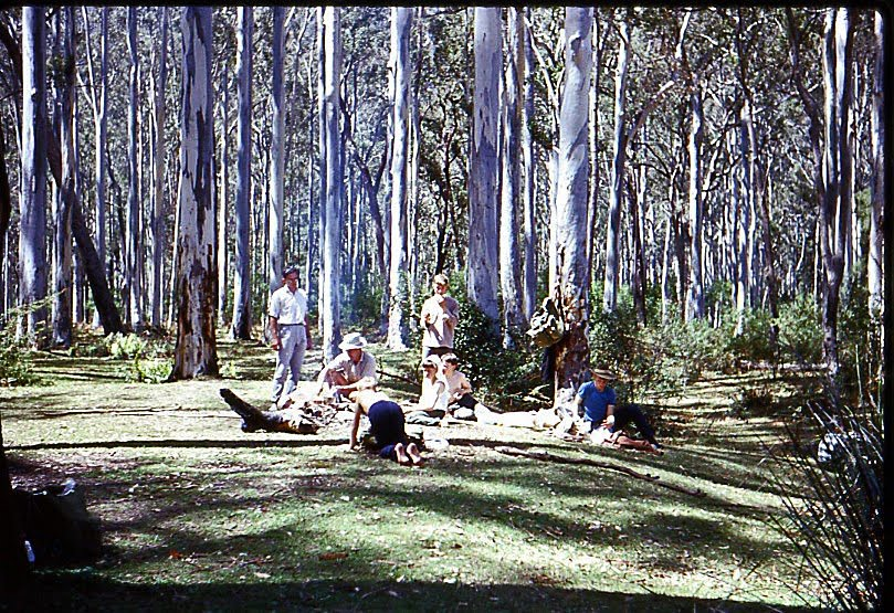 ... Depression the popularity of walking in the Blue Mountains revived.