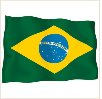 Brazil Flag Wave