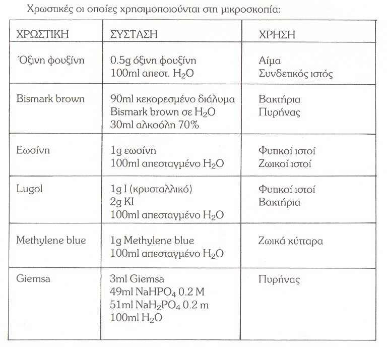Oπτικό Μικροσκόπιο (Optical Microscope) %CE%A7%CE%A1%CE%A9%CE%A3%CE%A4%CE%99%CE%9A%CE%95%CE%A3