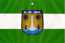 BANDEIRA MUNICIPAL