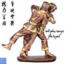 De judoprincipes