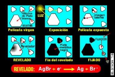 Radiologia a nivel odontologica essc fundamentos del revelado for Cuarto oscuro rayos x