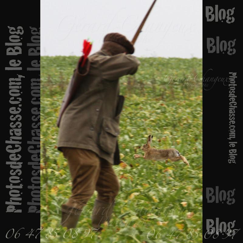 le blog de photos de chasse premieres images de la chasse a l 39 arc aux lievres organis e par l. Black Bedroom Furniture Sets. Home Design Ideas