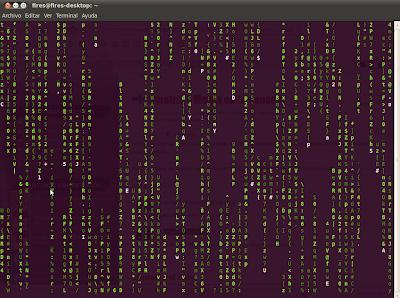 Imagen de matrix en tu terminal en Ubuntu 10.04