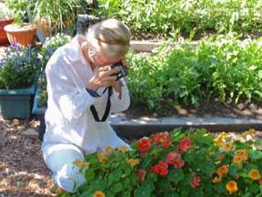 seed photographer Karen Bailey