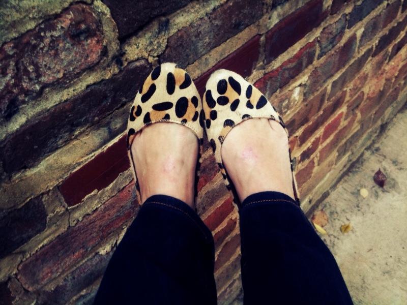 leopard flats, katie company